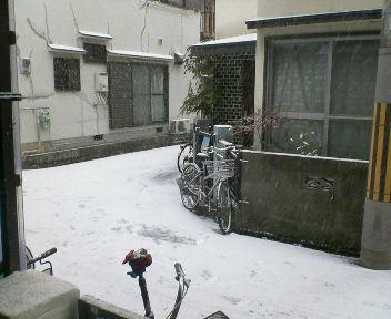 この前の雪の時の写真です^^